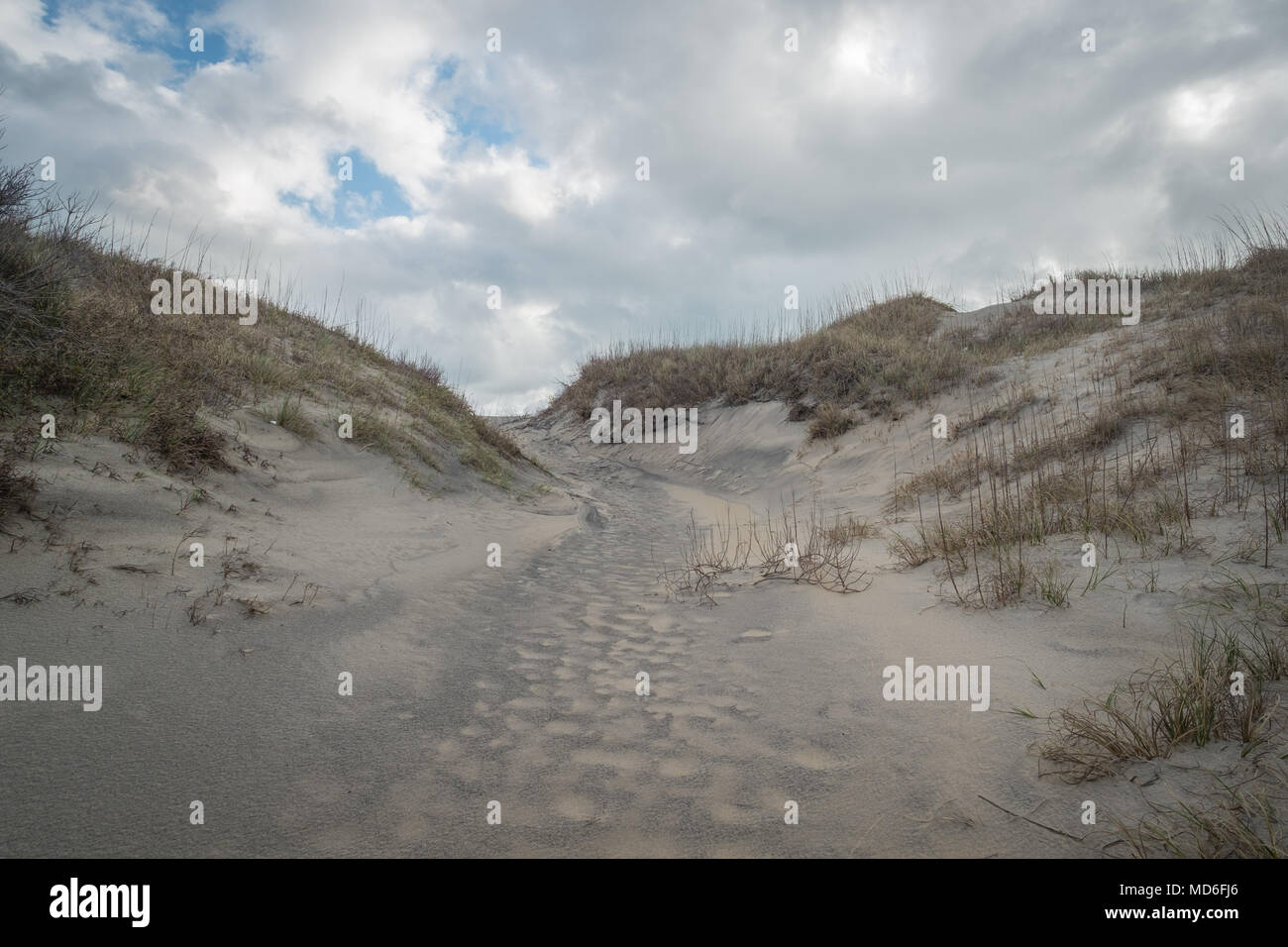 The beach in the Outer Banks, North Carolina. Stock Photo