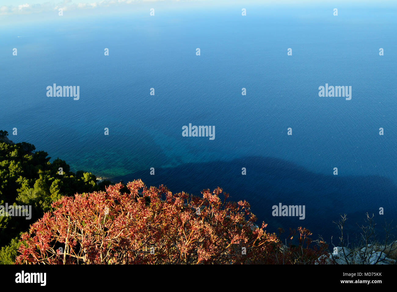 View of Palermo Gulf  from Mount Pellegrino, Sicily, Italy, Europe - Stock Image