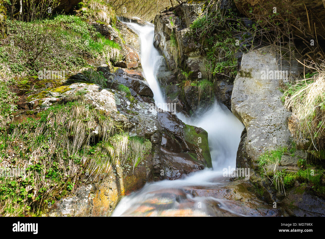 Curvy, sunlit mountain waterfall bouncing on the red, wet rocks covered with colorful moss during spring - Stock Image