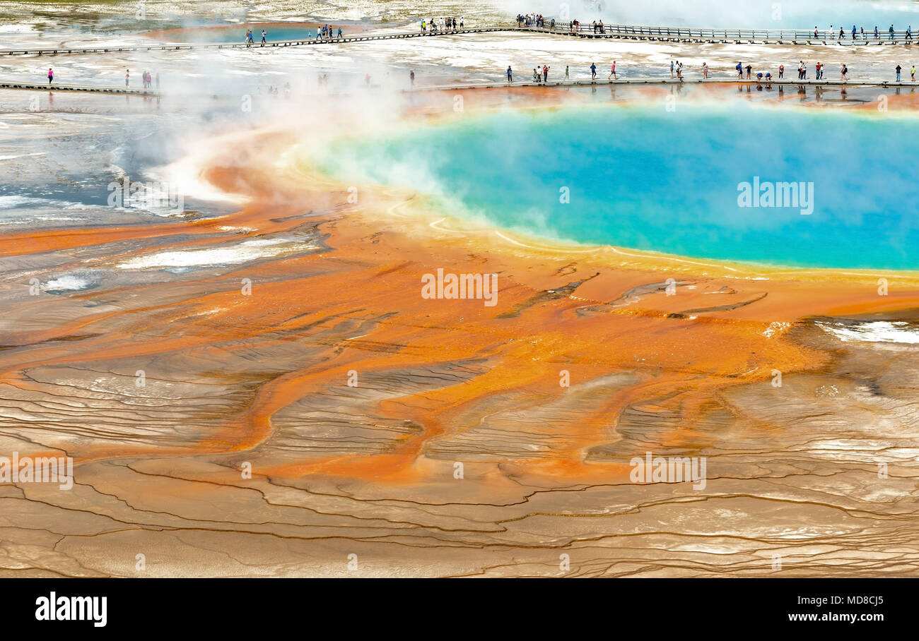Close up of tourists walking over the elevated walkway by the Grand Prismatic Spring inside Yellowstone national park, Wyoming, USA. - Stock Image