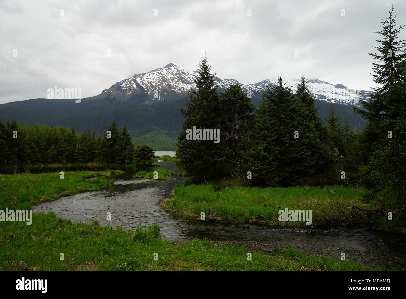 River, forest and mountains near Mendenhall Glacier, Alaska. - Stock Image