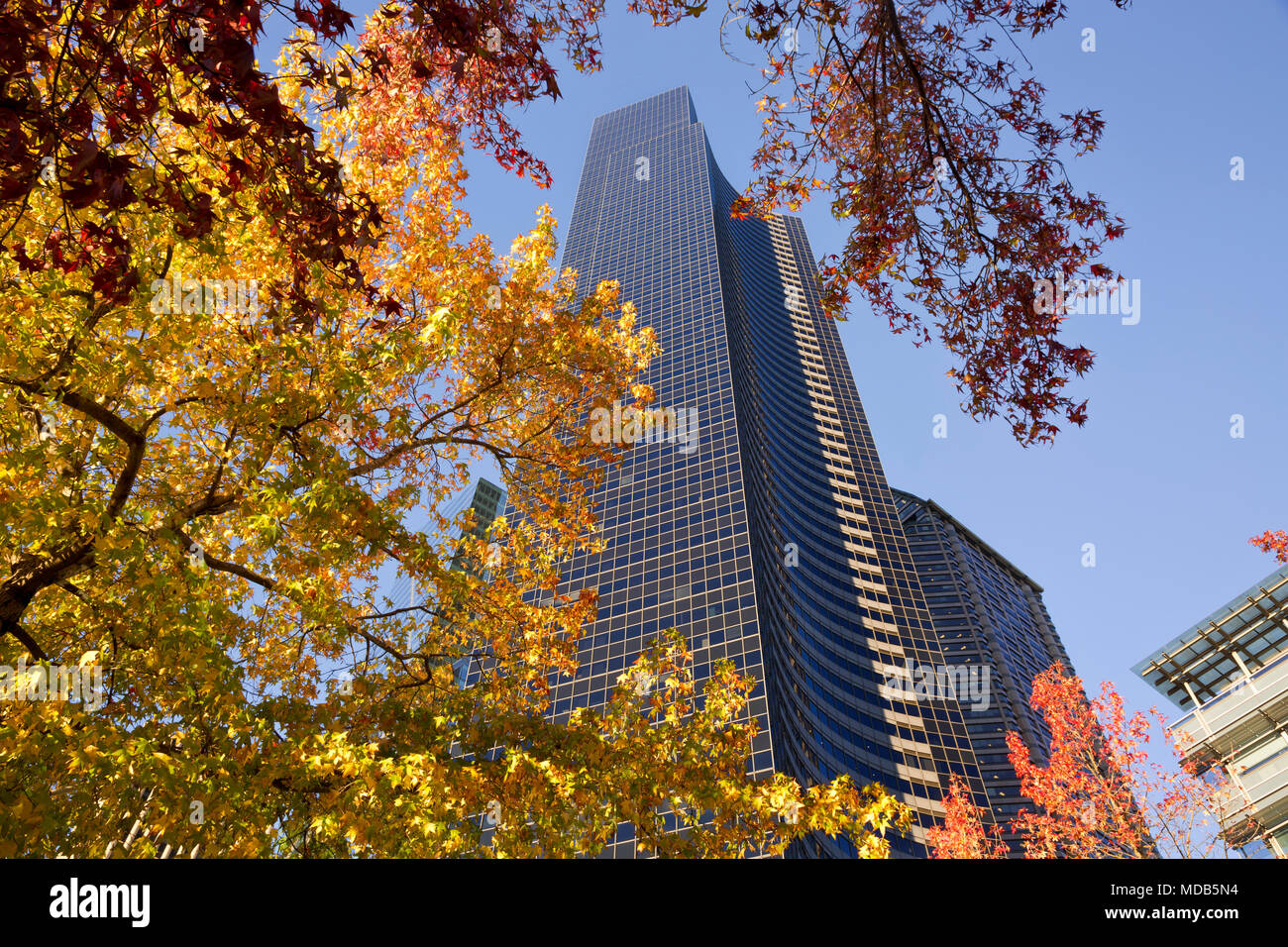 WA15286-00...WASHINGTON - Columbia Center, at 76 floors high, is the tallest building Seattle. - Stock Image