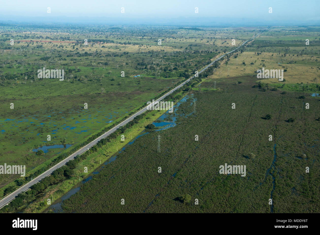 Road from Campo Grande to Corumbá (BR-262) in Mato Grosso do Sul, Brazil - Stock Image