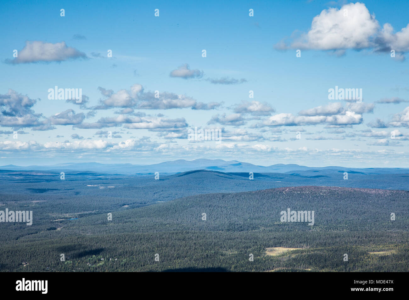 Landscape photo of a Finnish rural forest taken on top of Ylläs fell in Lapland - Stock Image