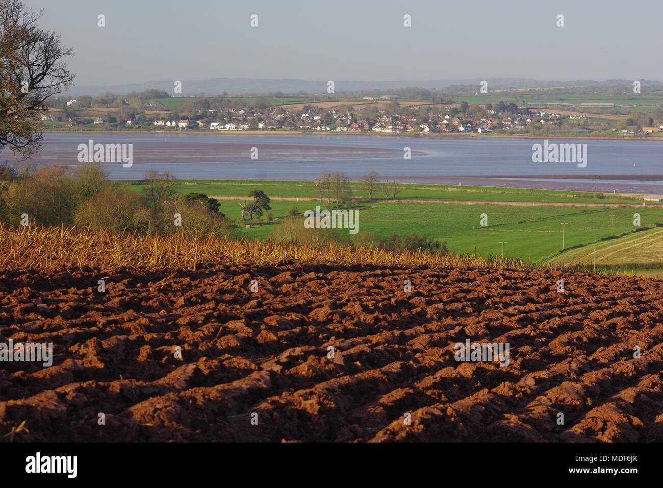 Ploughed Farmland by the Exe Estuary with Lympstone Village Beyond, in the Golden Light of a Spring Evening. Powderham, Exeter, Devon, UK. - Stock Image