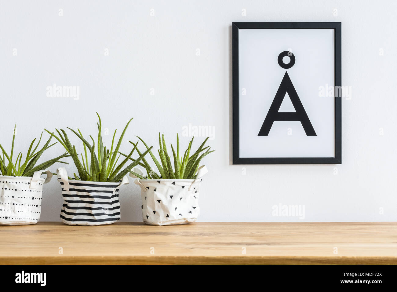Close-up of aloe in diy, patterned fabric planters on a shelf and a ...