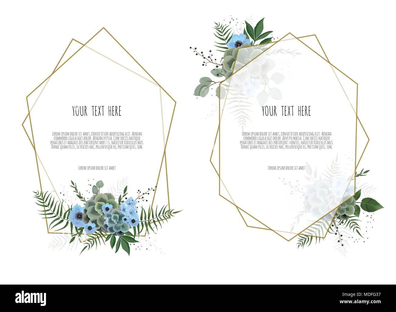 Set botanic card with wild flowers, leaves. Spring ornament concept. Floral poster, invite. - Stock Image