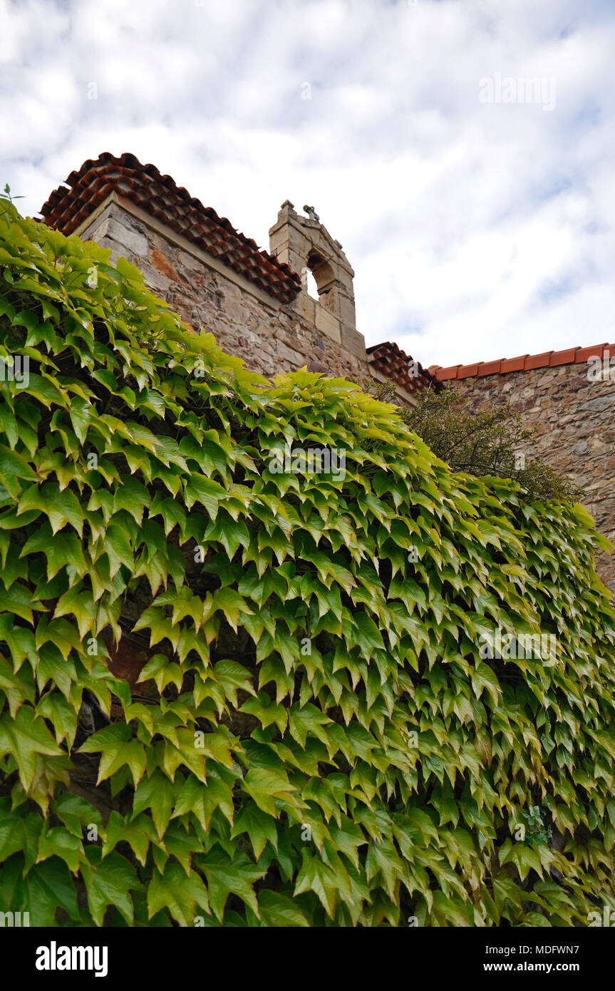 Detail of an old chapel roof and ivy in the wall in San Martín de Laspra (Castrillón, Asturias, Spain) - Stock Image
