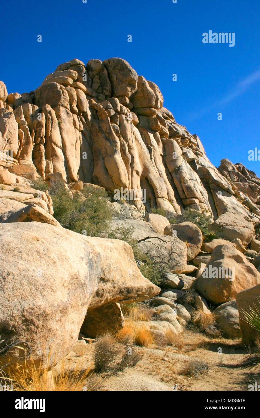 Rock Climb Hidden Valley Big Rocks Prickly Pear Cactus Mojave Desert Joshua Tree National Park, California Stock Photo