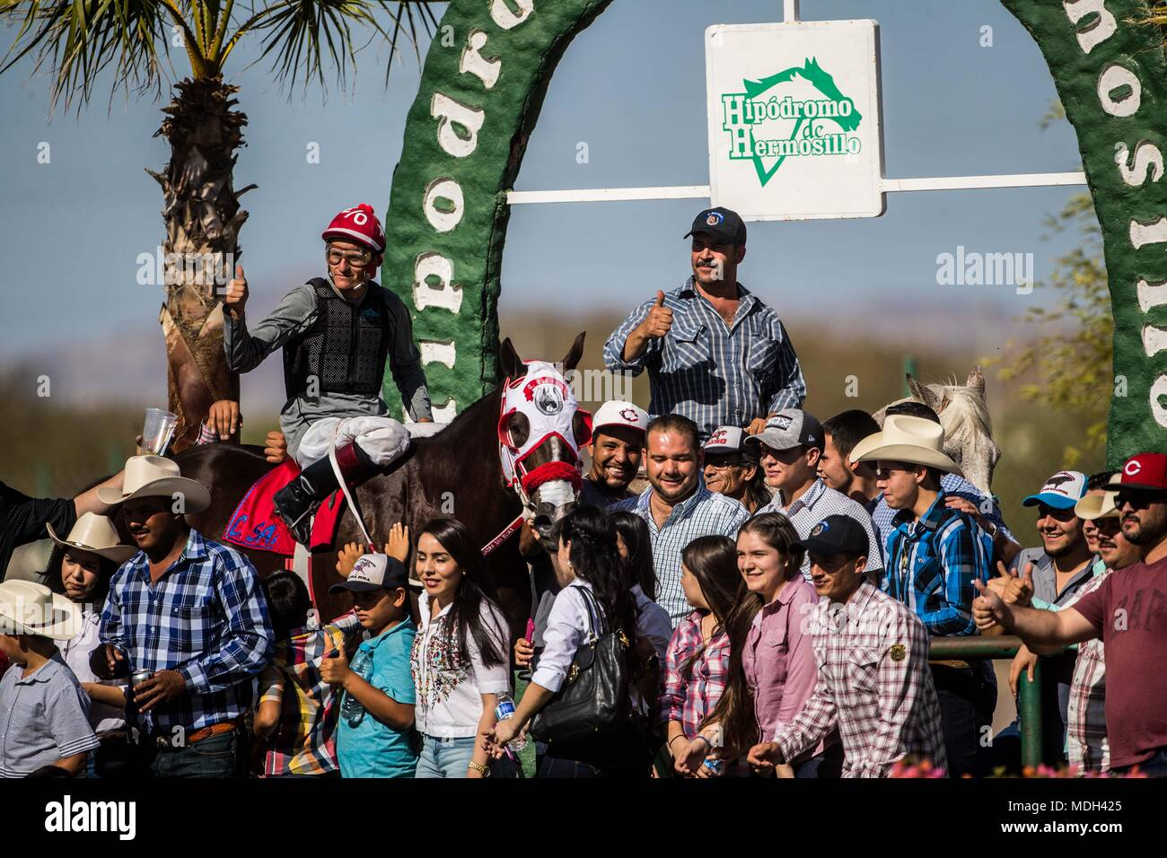 Horse racing at sunset at Hipodromo of Hermosillo, Sonora Mexico. Mexican guys trying to win the race.Horse racing, Horse racing. Betting. racecourse - Stock Image
