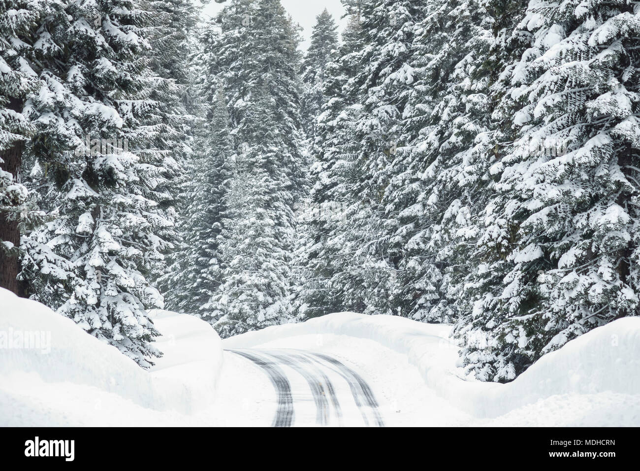 Snowy road with icy conditions in the mountains; Keno, Oregon, United States of America - Stock Image