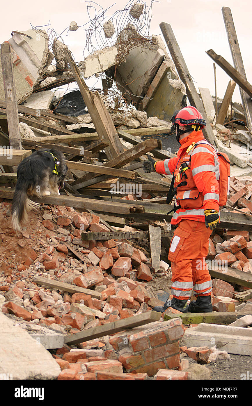 urban search and rescue team working with specialist search dog to find casualty and victims - Stock Image