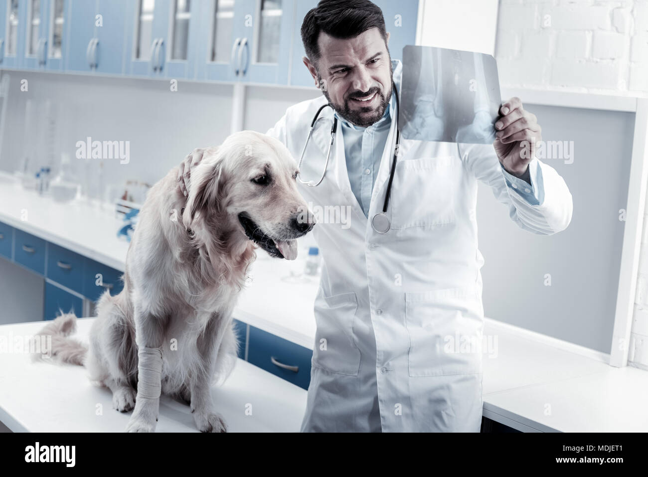 Positive nice doctor putting a diagnosis - Stock Image