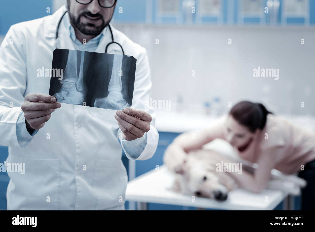 Selective focus of an X ray photo - Stock Image
