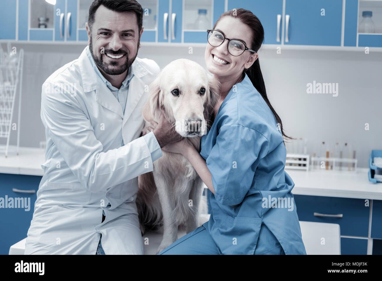 Nice delighted colleagues hugging the dog - Stock Image