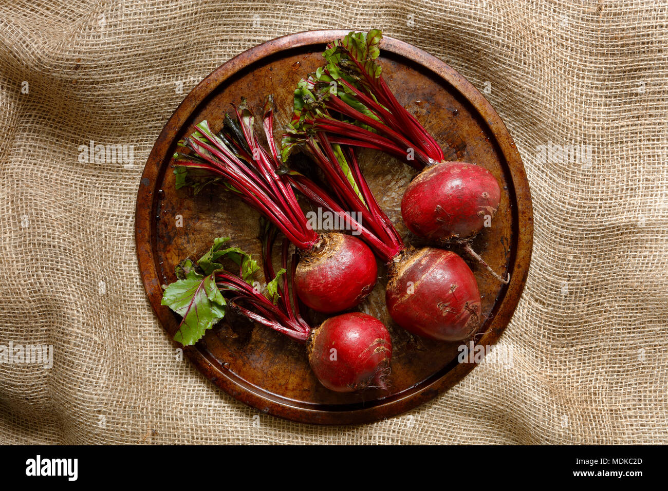 Fresh beetroots on metal tray on hessian sack cloth - Stock Image