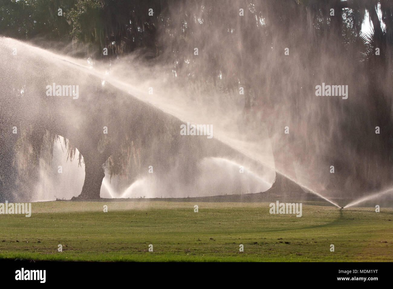 Sprinklers pour water onto golf course fairway - Stock Image