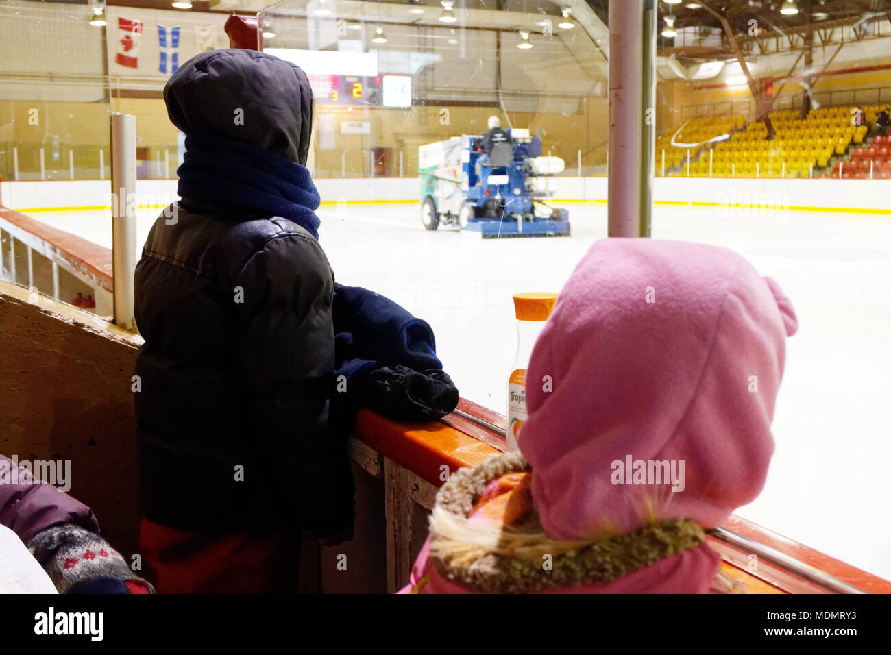 Children watching a zamboni preparing the ice in a small hockey arena - Stock Image