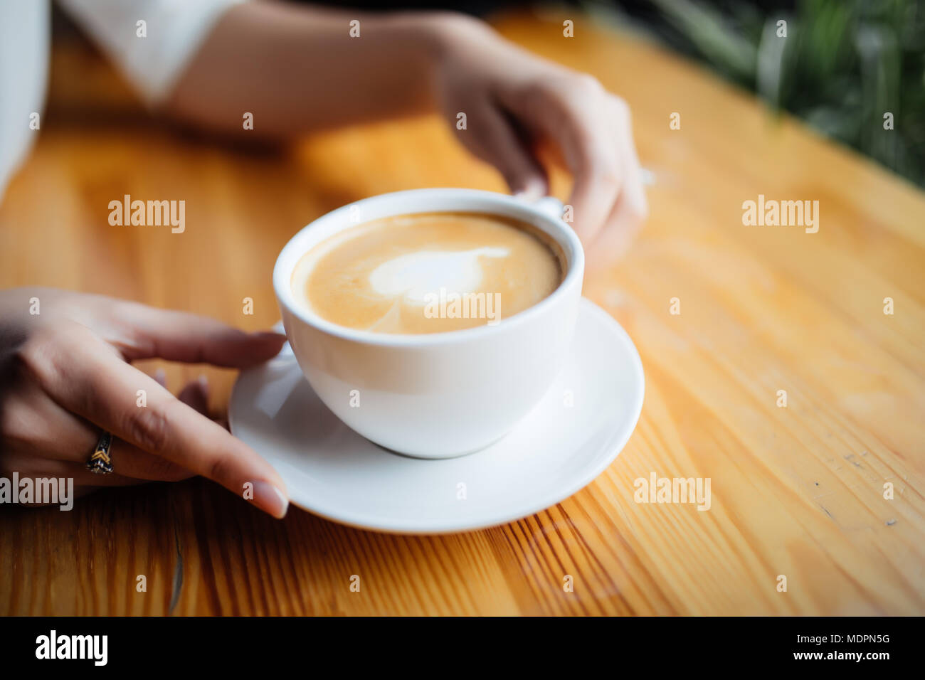 Close up of female hands holding cup of hot drink in cafeteria - Stock Image