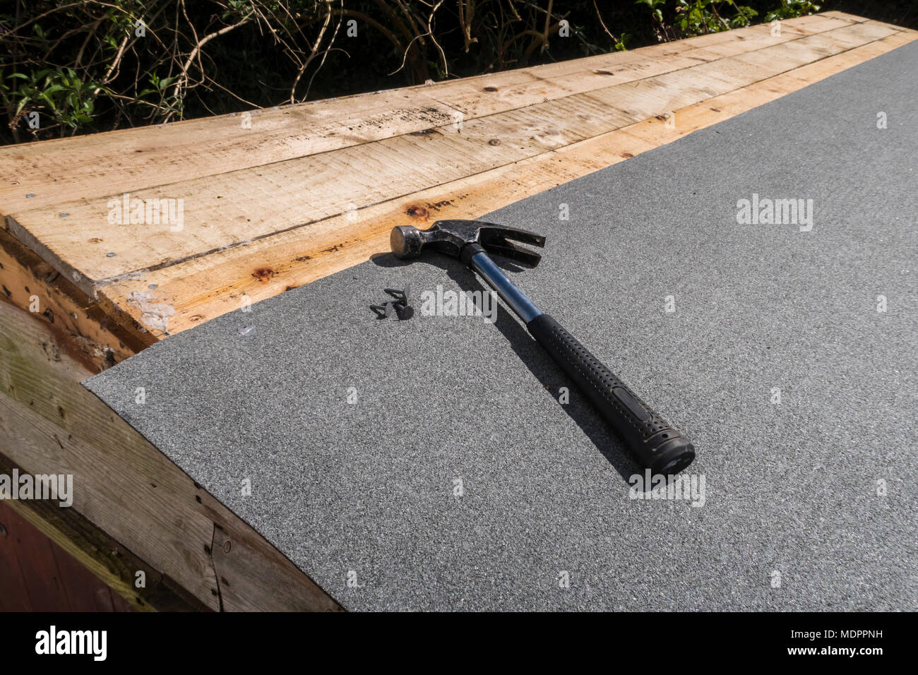 Repairing a leaking shed roof. Claw hammer and clout nails on to of new mineral coated roofing felt.