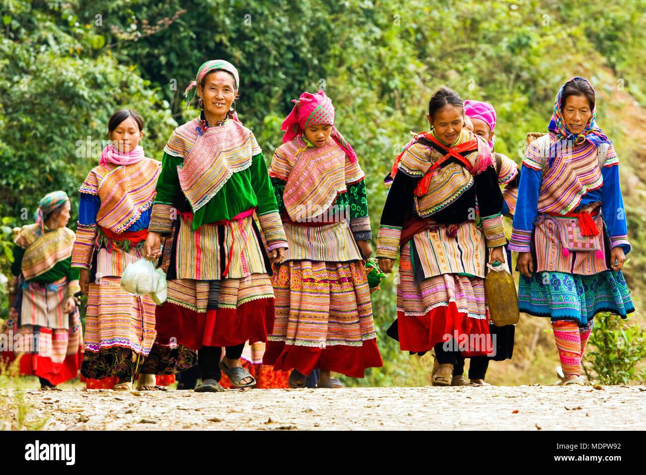 nr. Bac Ha, Vietnam; Flower Hmong women returning from Lung Phin market, Ta Chai village. Stock Photo