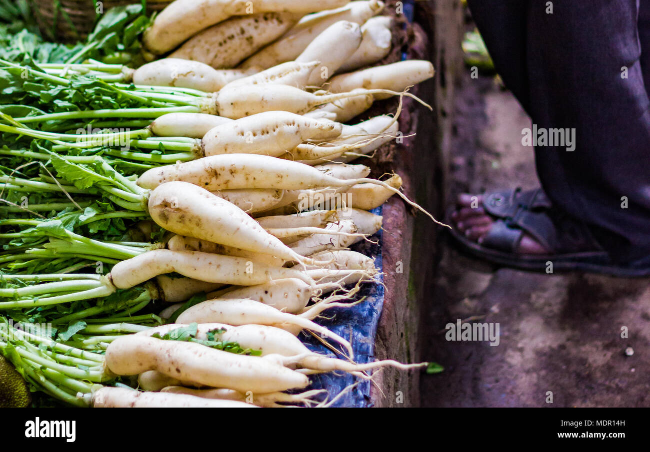heap of white radish in retail vegetable super market for sale - Stock Image