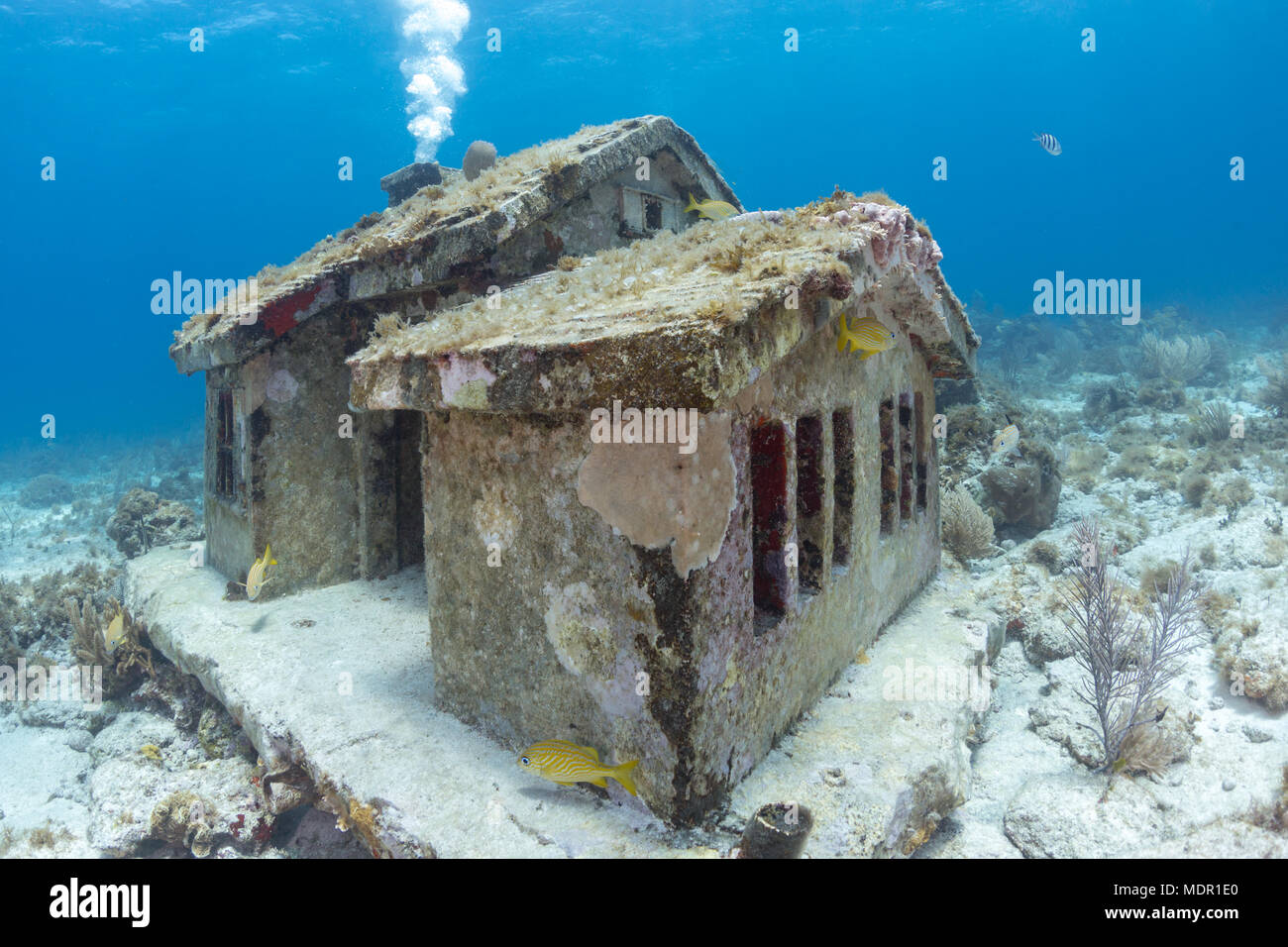 Image result for underwater house