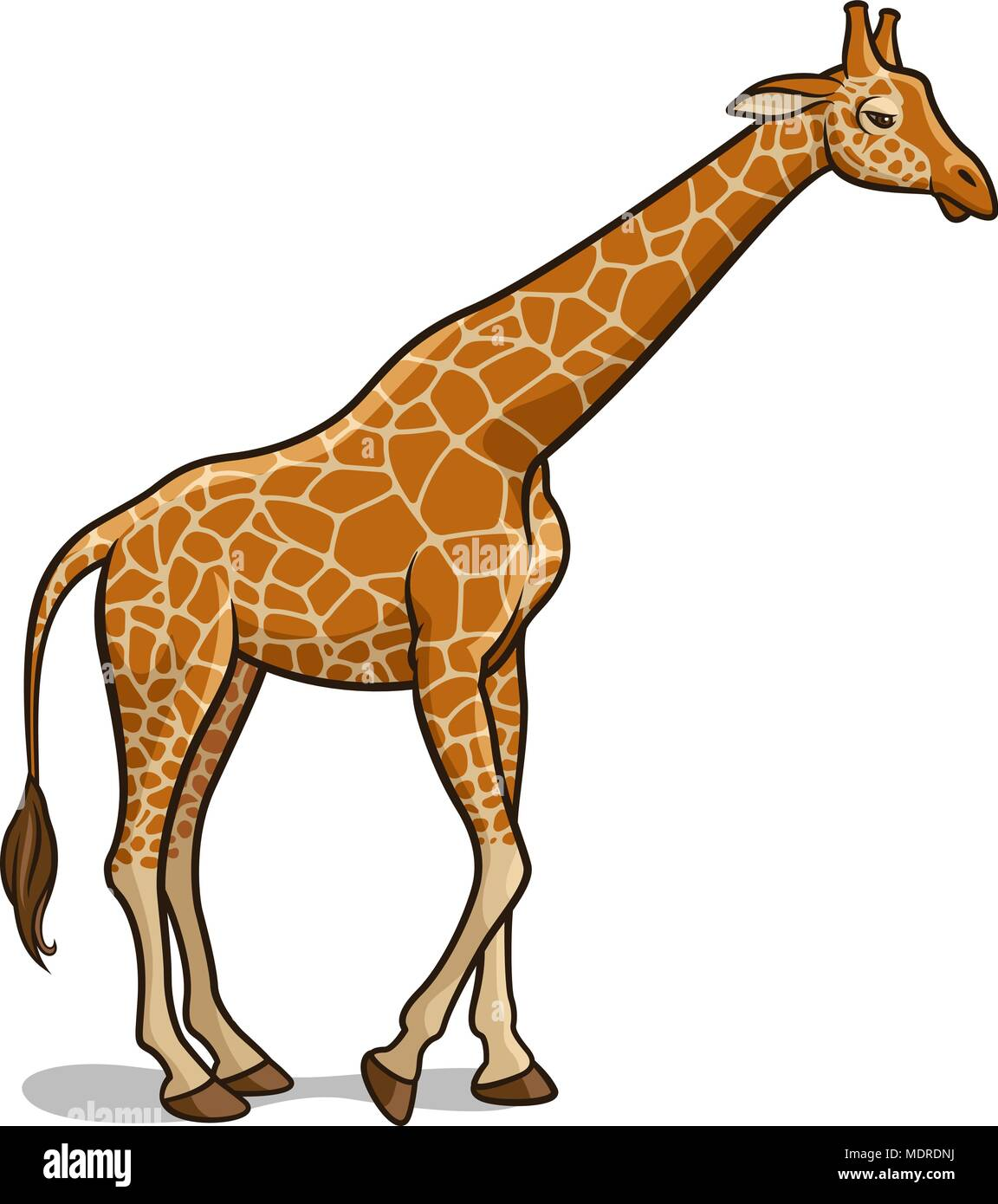 Giraffe Cartoon Stock Vector Images - Alamy - photo#39