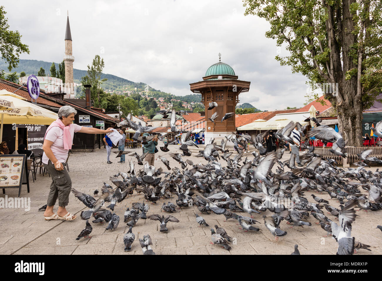 Sarajevo, Bosnia-Herzegovina, July 16 2017: Woman feeds pigeons in front of the Sebilj fountain in historical city center - Stock Image
