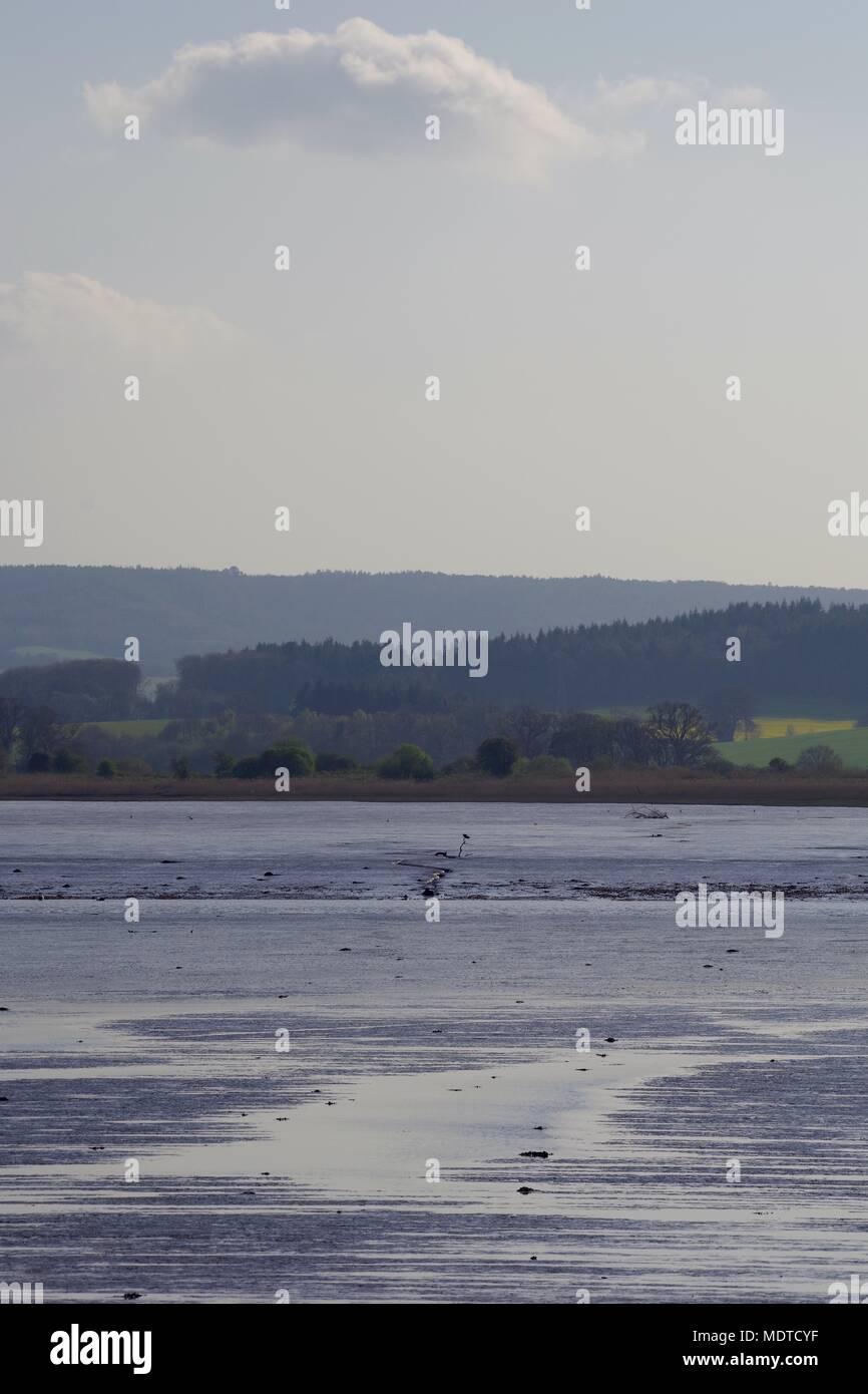 Muddy Landscape of the Exe Estuary, with Wooded Farmland in the Distance under a Cumulus Cloud. Topsham, Exeter, Devon, UK. April, 2018. - Stock Image
