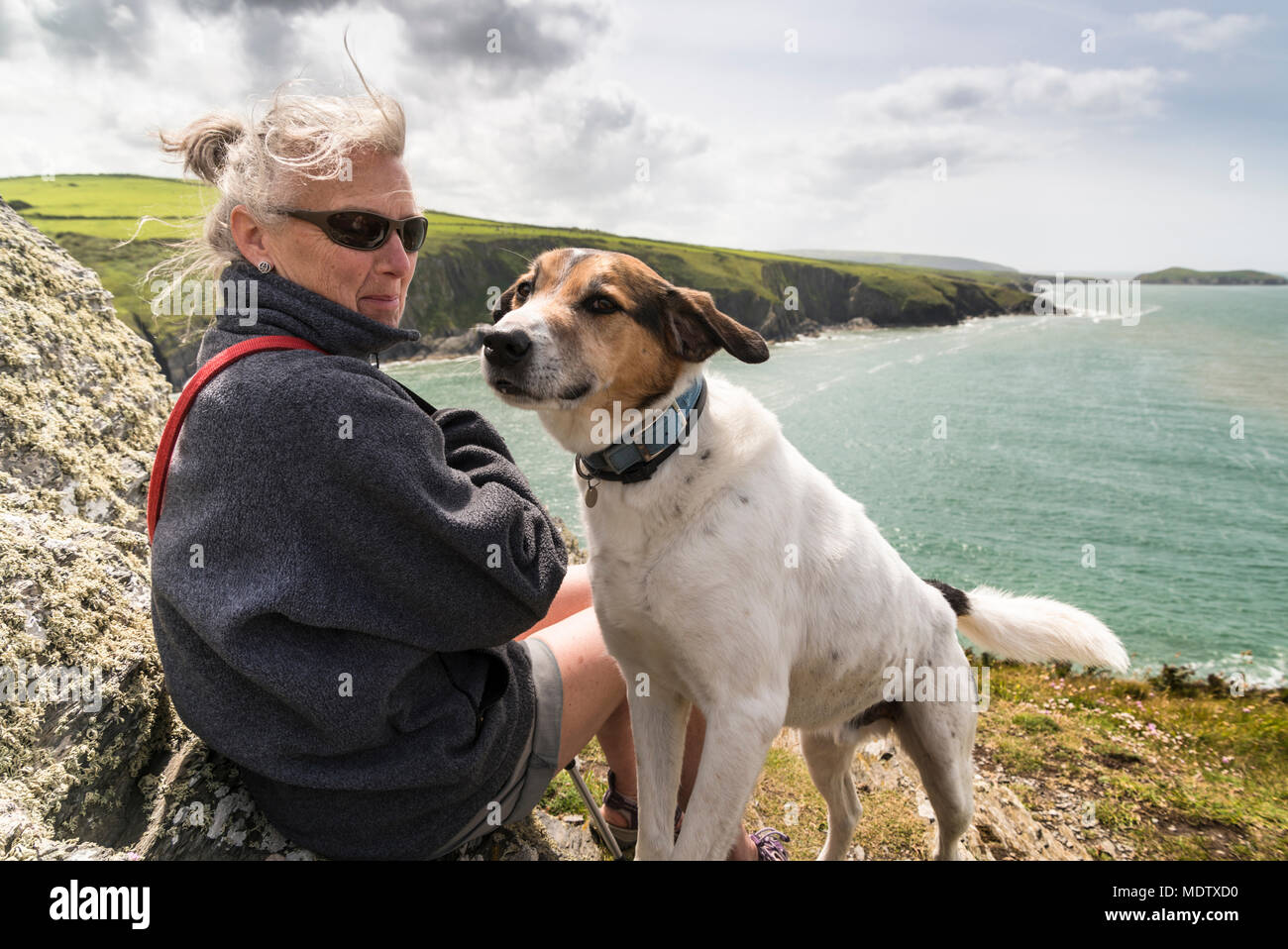 Walking the dog on Foel y Mwnt with Ceredigion coast and Cardigan Bay in the background - Stock Image