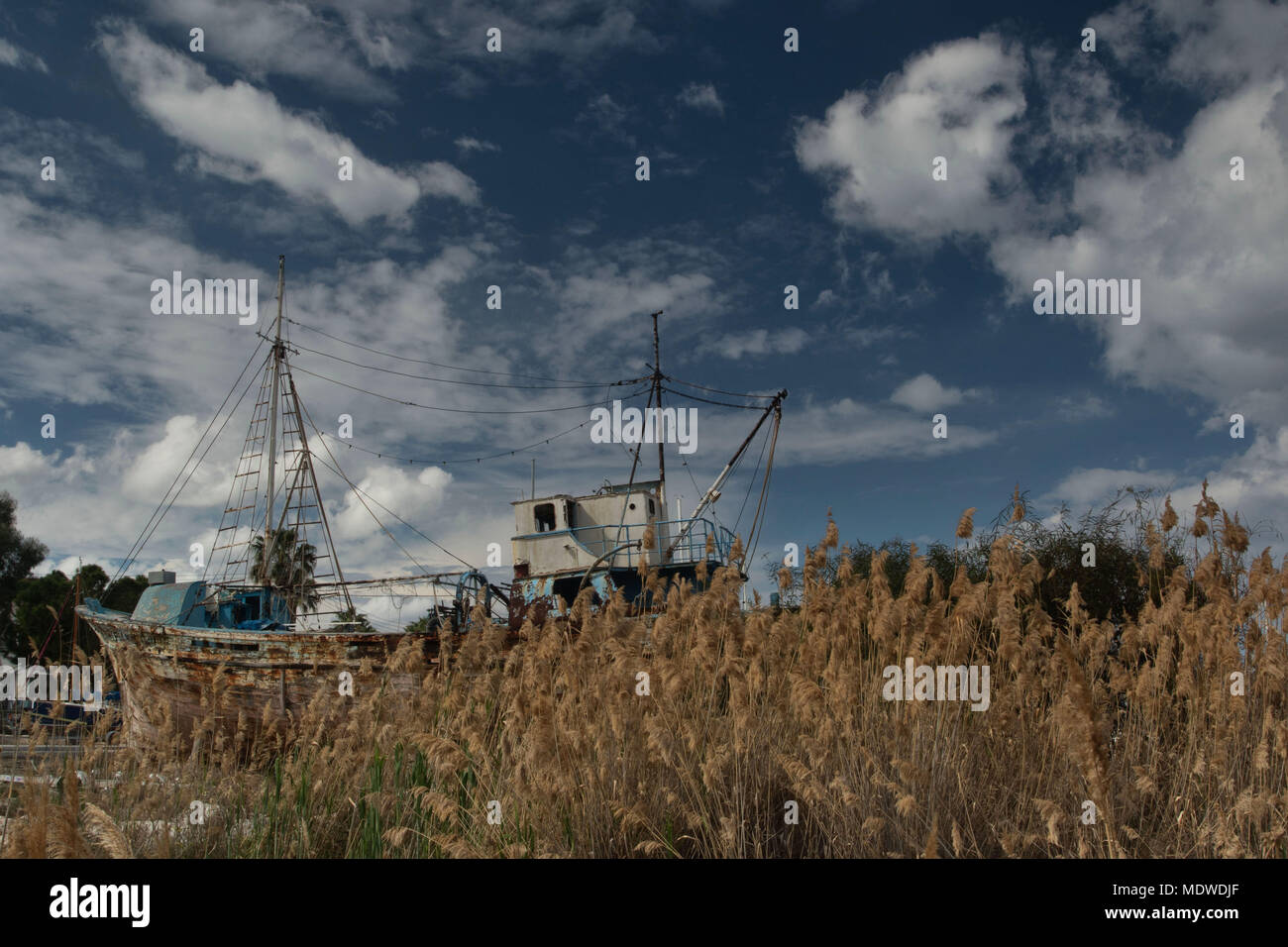 Dramatic sky over field of reeds and wooden ship, Polis, Cyprus Stock Photo
