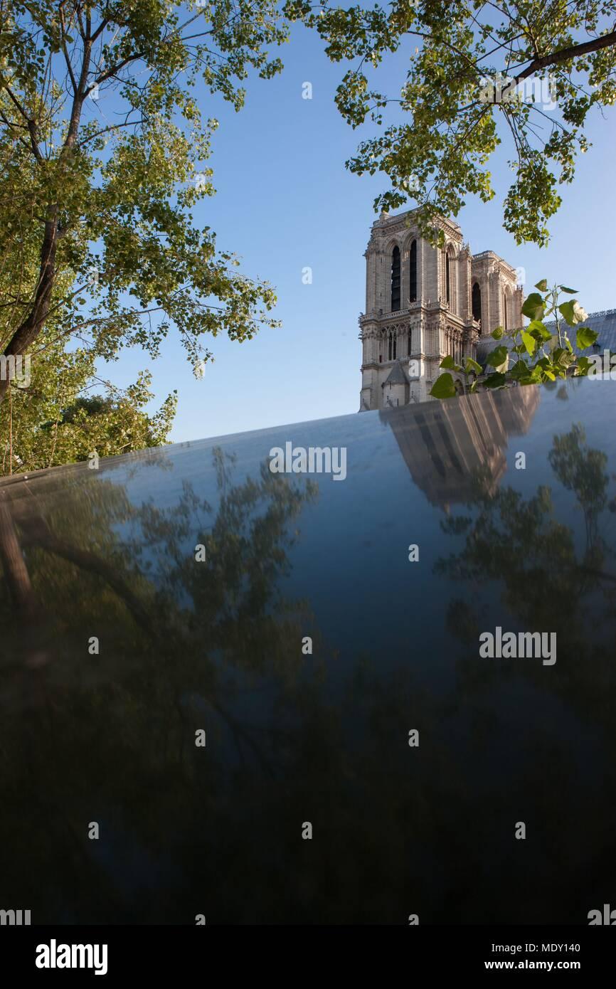 Paris, quai de la  tournelle, Rive Gauche, in front of Notre Dame de Paris, reflet des towers sur une second hand book seller box, trees - Stock Image