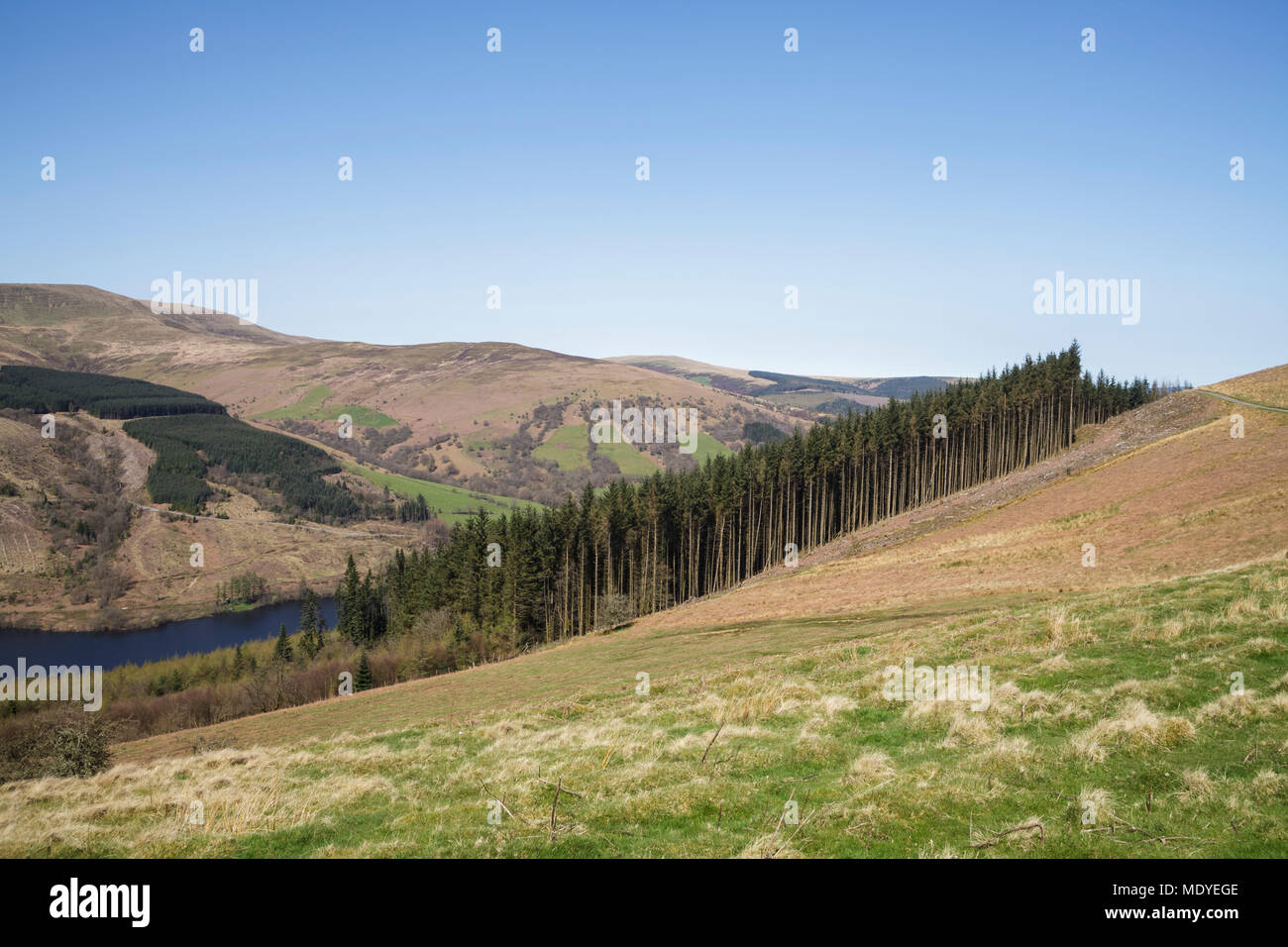Talybont Valley in the Brecon Beacons National Park - Stock Image