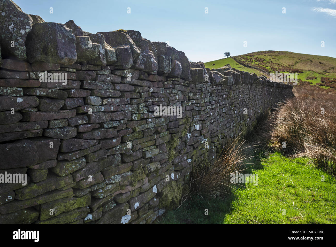 Dry Stone Wall above the Talybont Reservoir in the Central Brecon Beacons - Stock Image