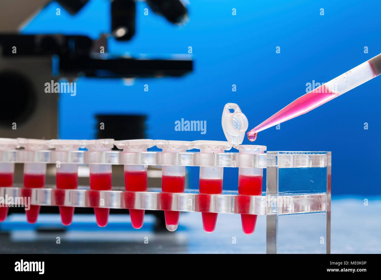 Identification of pathogenic microbes and viruses. - Stock Image
