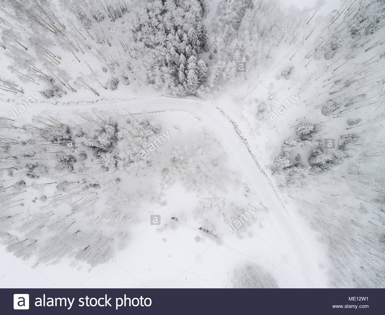 A snow covered road through a forest near Crested Butte, Colorado from directly overhead. - Stock Image