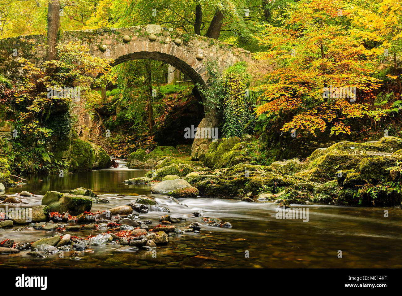 An Autumnal shot of Foley's Bridge over the Shimna River in Tollymore Forest Park in County Down, Ireland. - Stock Image