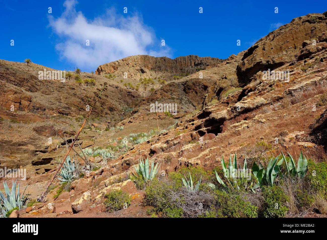 Barranco de la Barca, Mount Calvario, near Alajero, La Gomera, Canary Islands, Spain - Stock Image