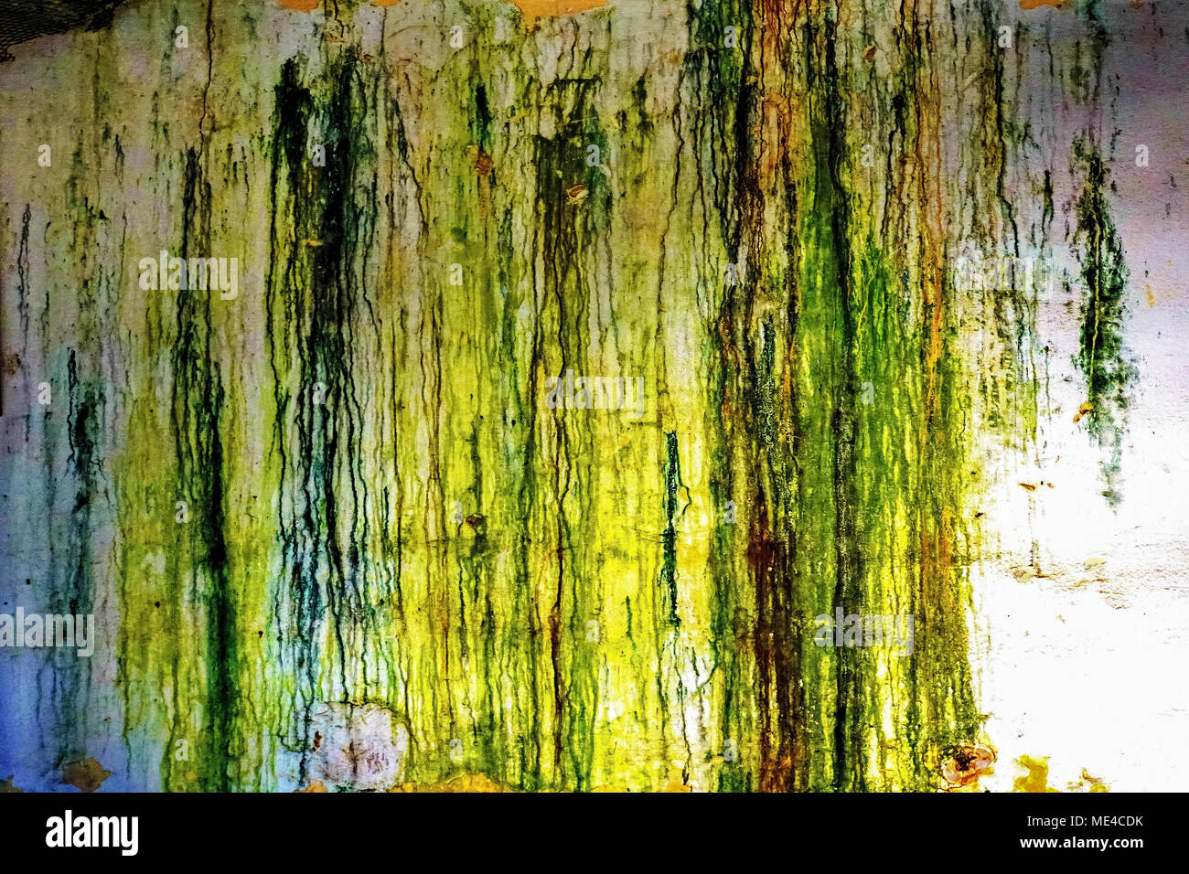paint on wall - green and yellow Abstract background - Stock Image