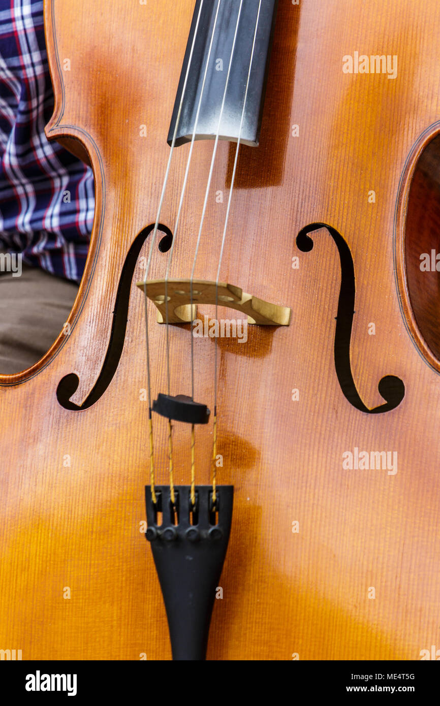 Close up of an Upright Bass in Kotor Stock Photo