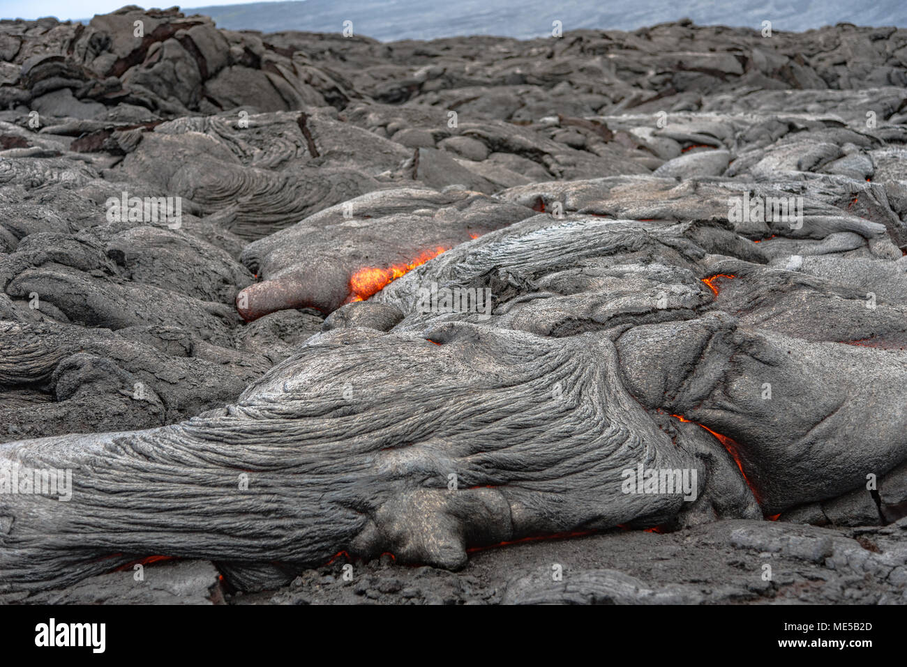 Lava flowing at the Kalapana Lava Field on the Island of Hawaii - Stock Image