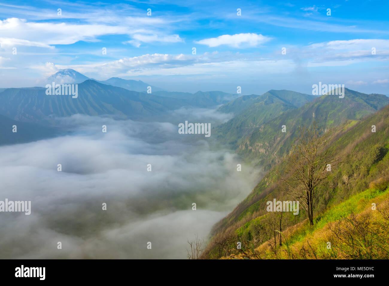 Indonesia. Java island. Morning in the Bromo Tengger Semeru National Park. Dense fog in the valley between volcanoes - Stock Image