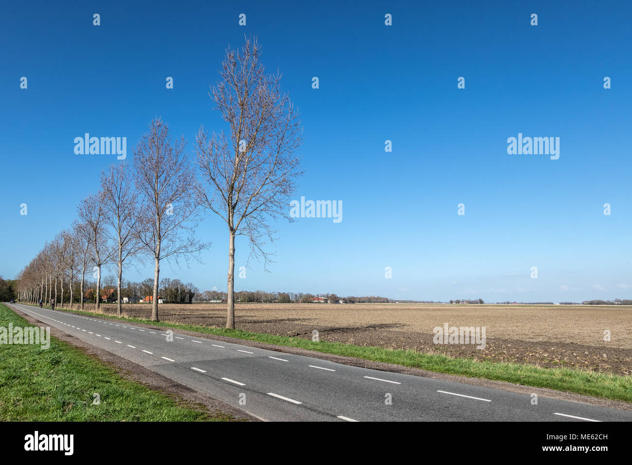 Dutch farmland in spring with bare fields - Stock Image