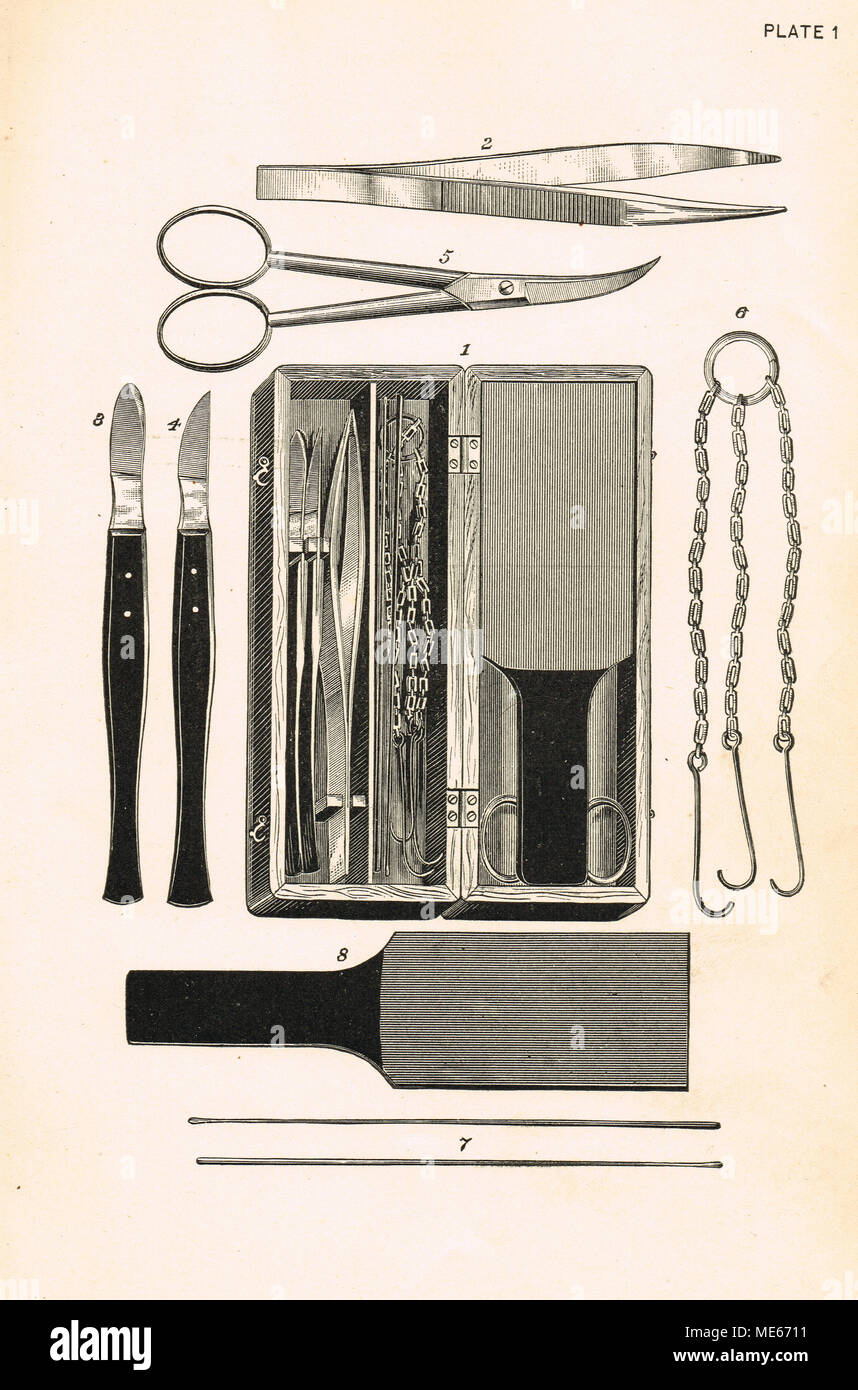 19th Century Anatomical dissecting tools - Stock Image