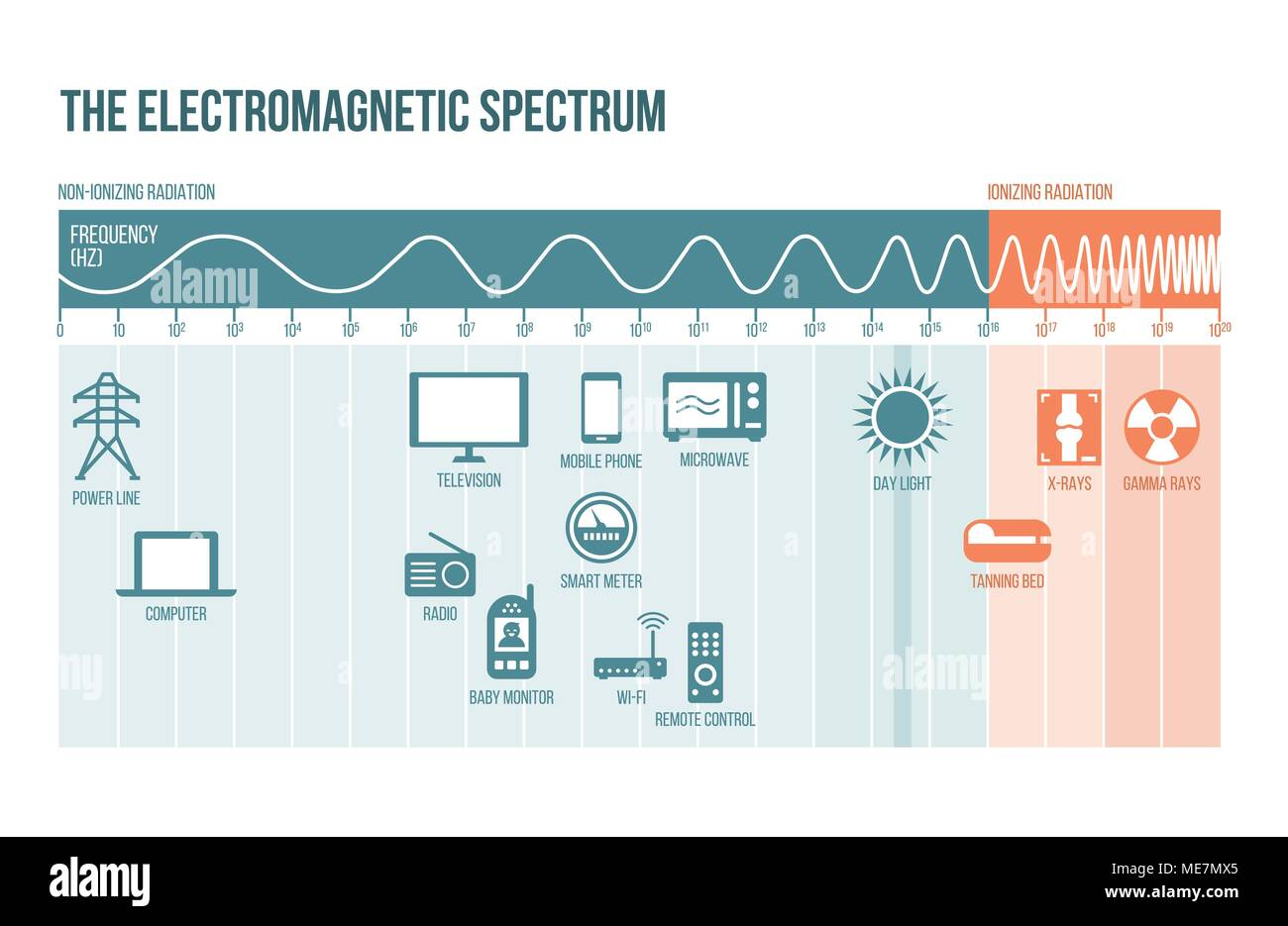 The electromagnetic spectrum diagram with frequencies, waves and examples - Stock Vector