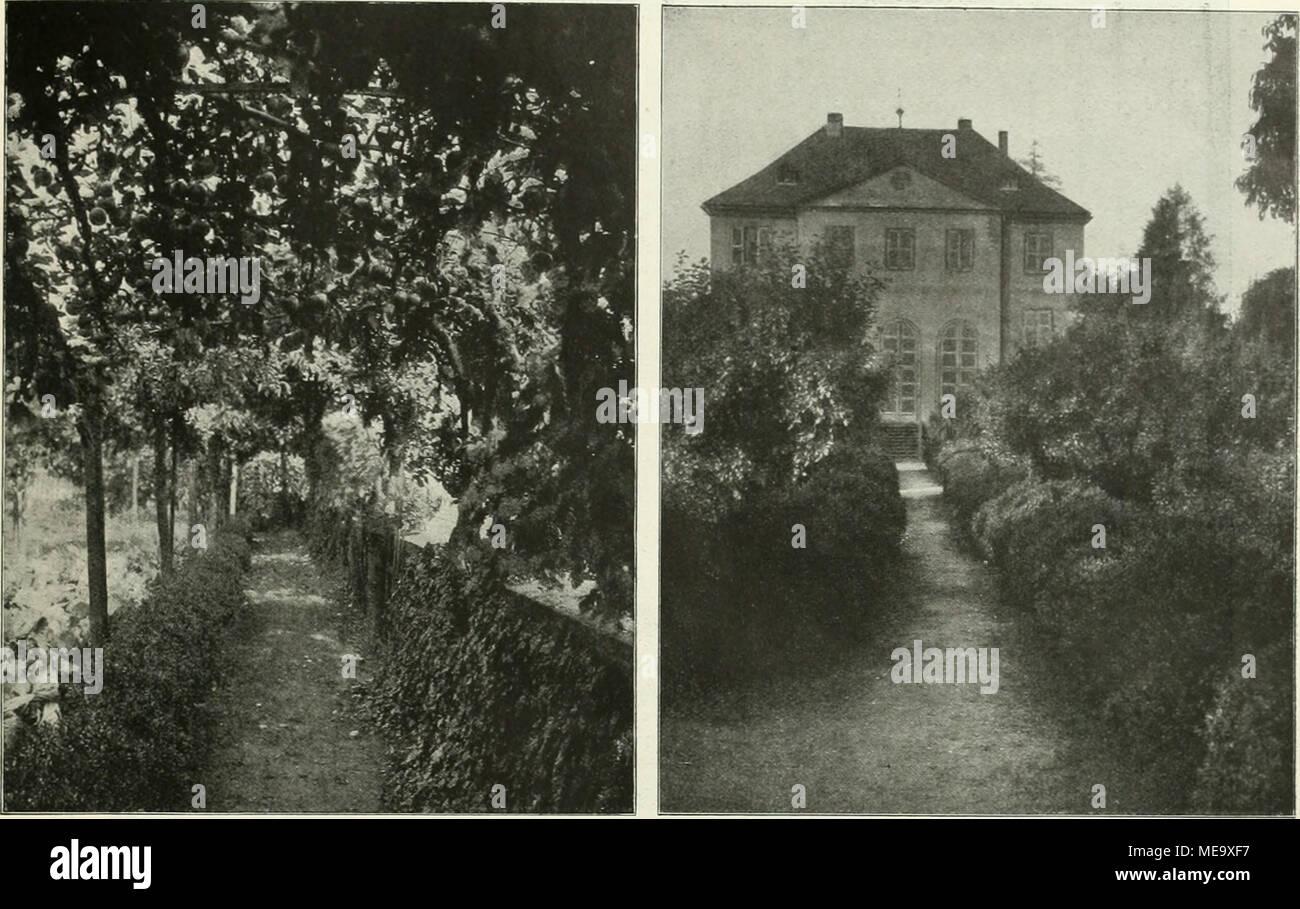 Obstgang Aus Dem Garten Des Herrn Herten, .