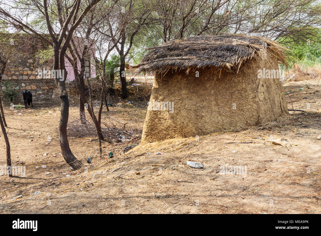 Traditional farming methods: view of typical roadside structure made of dried cow dung stored to be used for fuel, near Dausa, Rajasthan, north India Stock Photo