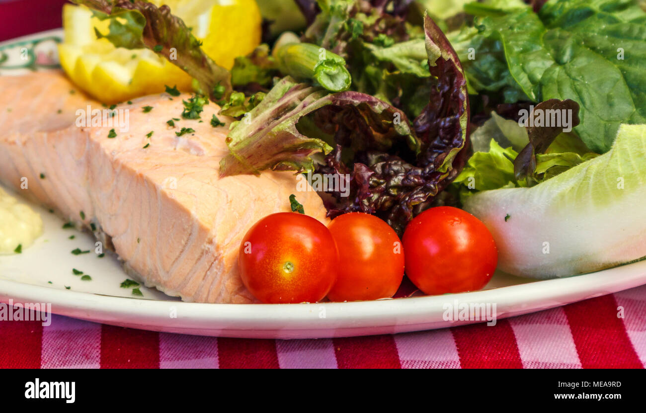 Traditional English pub food: meal of a plate of cold salmon salad served with a garnish of tomatoes and lettuce for a healthy lunch or dinner - Stock Image