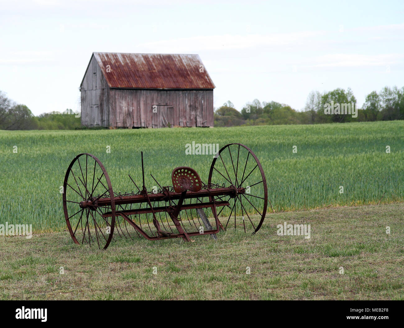 antique horse drawn cultivator with farm field and tobacco barn in background - Stock Image